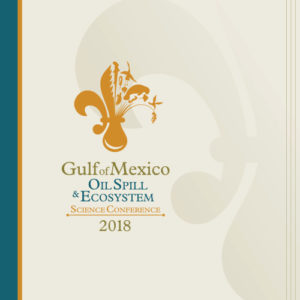 2018 GoMOSES conference program cover