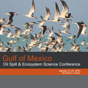 2013 GoMOSES conference program cover